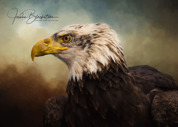 painting of Bald Eagle by Jordan Blacksone, Vancouver Island artist