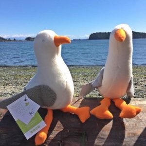 Seagull stuffies, handmade on Vancouver Island by Sweet Peas
