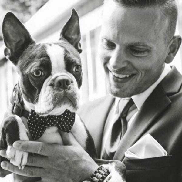 groom with dog wearing wedding dog bow tie by Black Cat Stitches