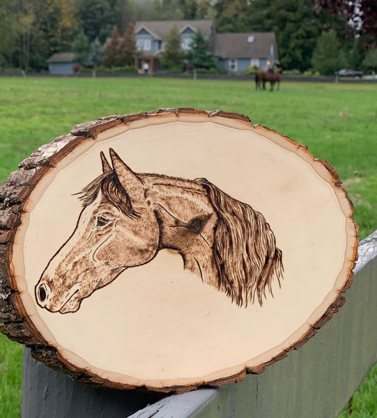 woodburnt image of horse, handcrafted on Vancouver Island by Honeybeezigns