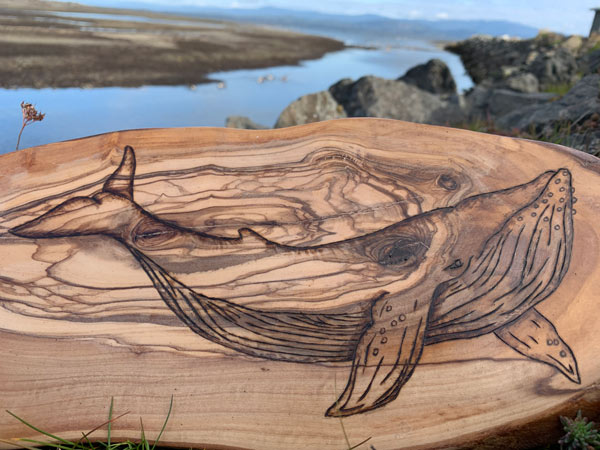 whale woodburning (pyrography) made on Vancouver Island by Honeybeezigns