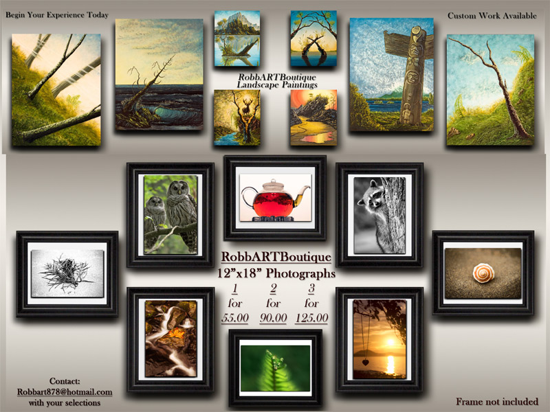 vancouver island photography and artwork, gift ideas from canada