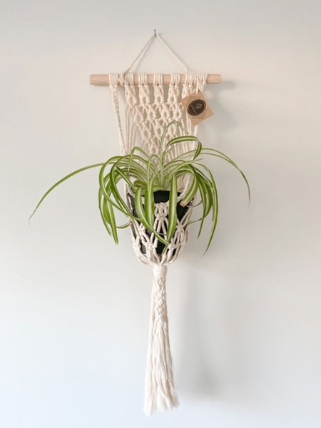 macrame plant hanger made on vancouver island in nanaimo canada by West Coast Cozy